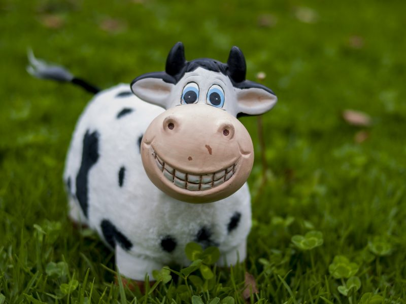 animal sounds, animal noises, toy cow, speech, learning, speech therapy, hertfordshire, bedfordshire